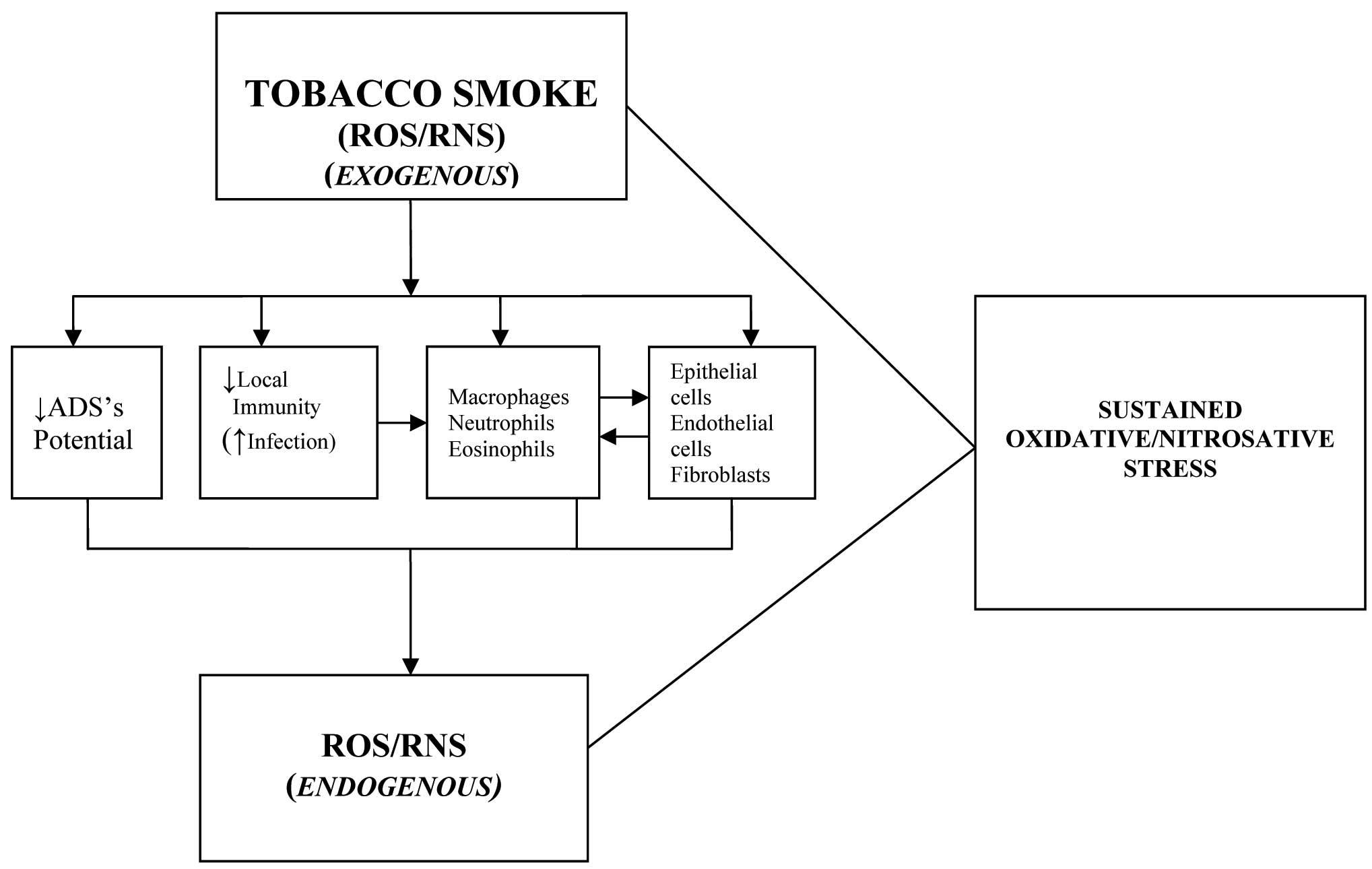 Jcdr G Chronic Obstructive Airways Disease Pathophysiology