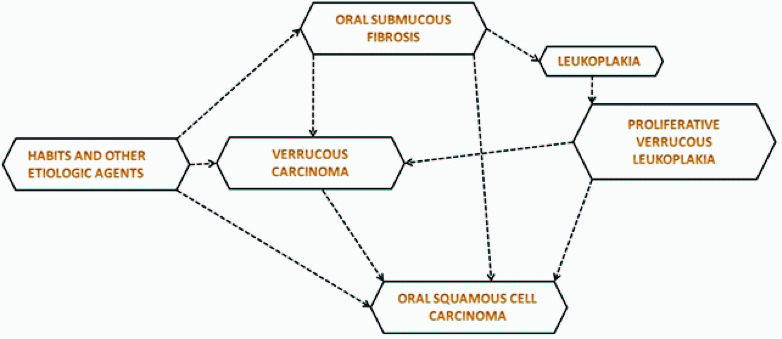 Illustrating possible role of factors in development of verrucous carcinoma